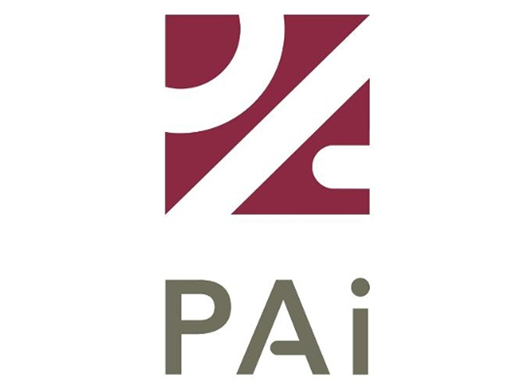 Web Portfolio - Client PAI logo