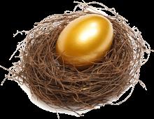 PAi nest egg